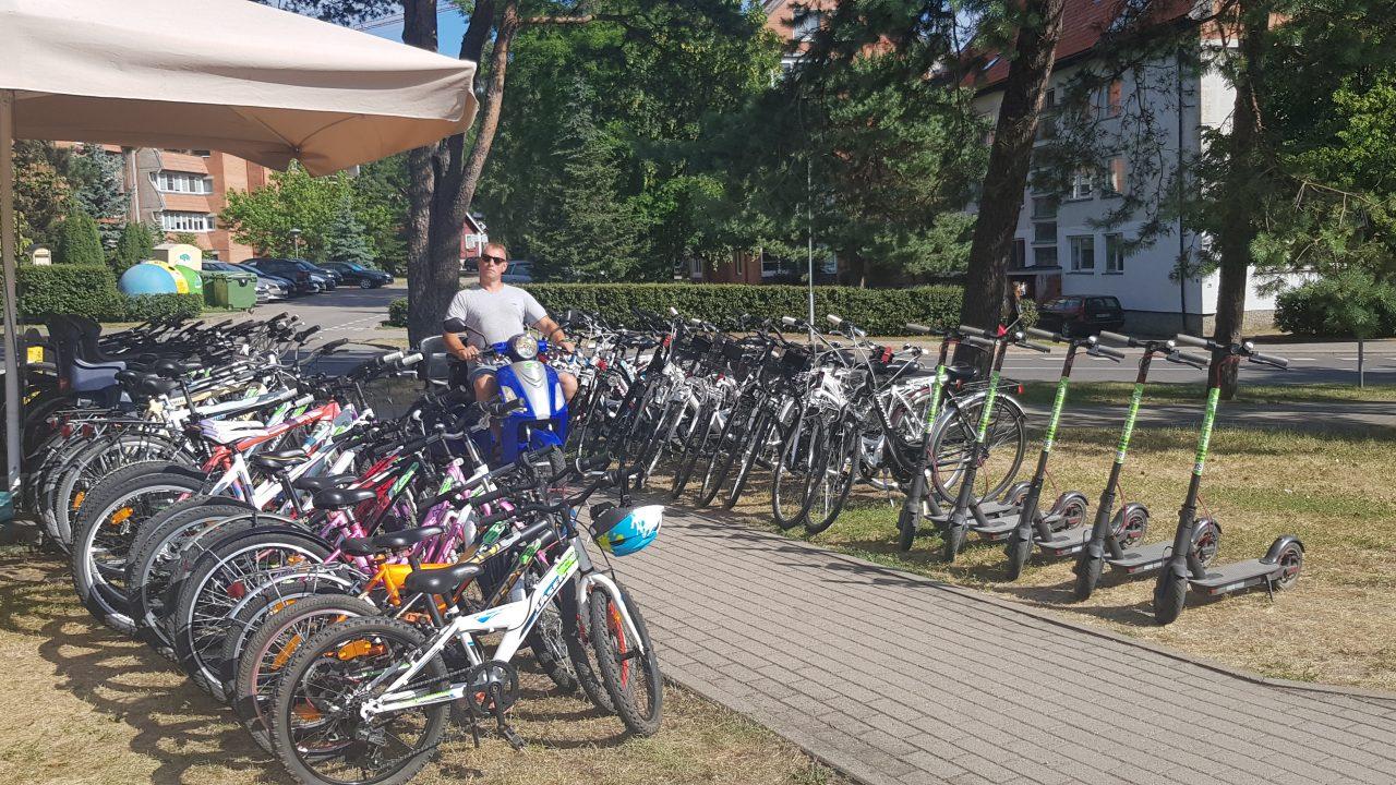 Taikos 11 dviraciai